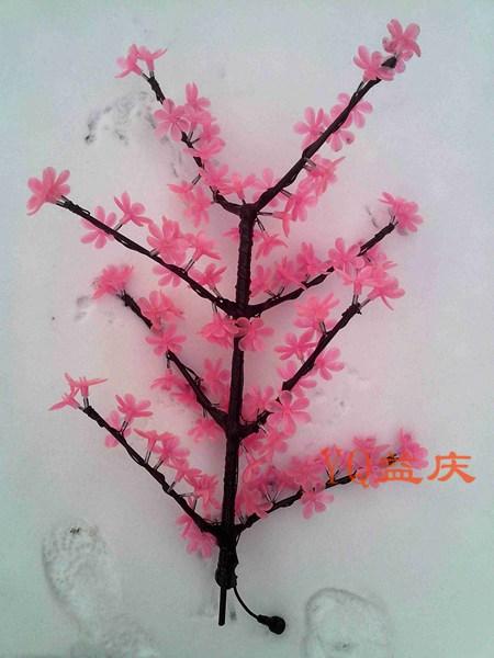 粉紫荆花枝